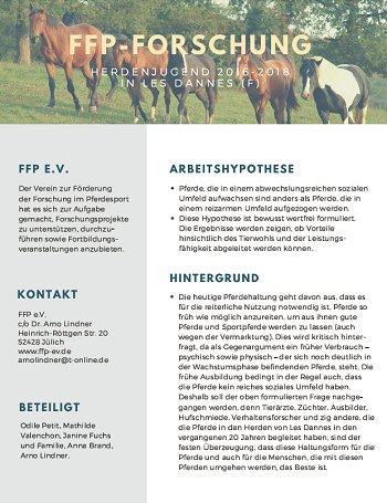 Flyer Herdenjugend